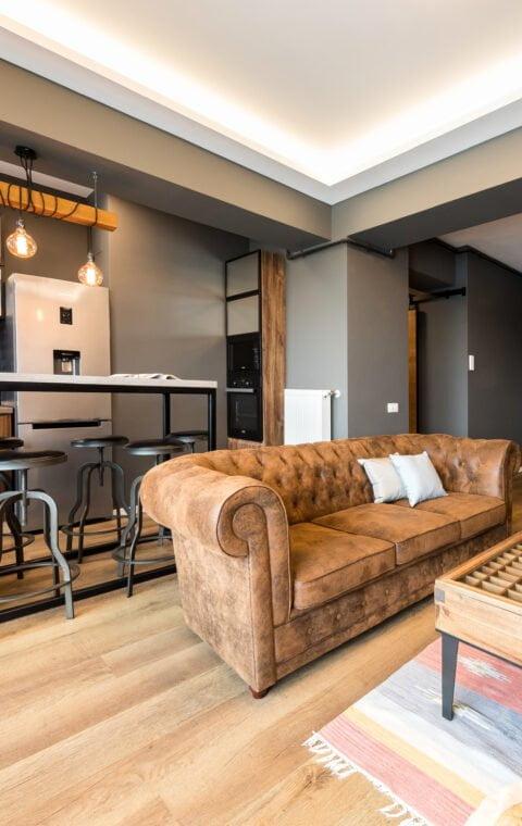 Industrial Posh Apartment
